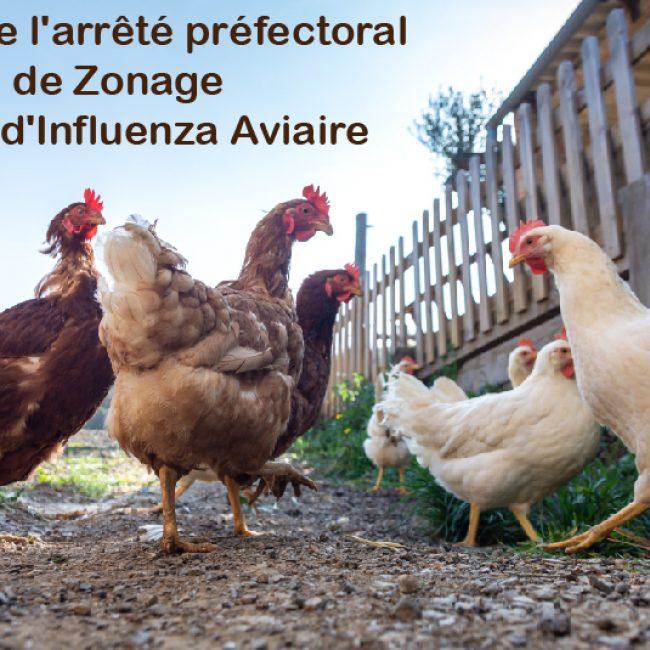 Levée de l'arrêté préfectoral de Zonage par rapport à un foyer d'Influenza Aviaire Hautement Pathogène