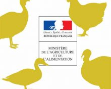 Point de situation du 23 janvier 2021 – Influenza aviaire