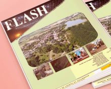 Le Flash Janvier 2019